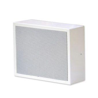 Wall-Mount-Speaker